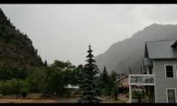 Žaibo trenksmas į medį