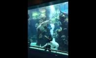 Ryklys išsireikalauja naro dėmesio
