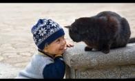 Katinai saugantys kūdikius