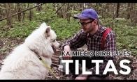 KAIMIEČIO DIRBTUVĖS #8 - TILTAS