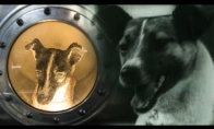 Liūdna kosmoso šuns Laikos istorija