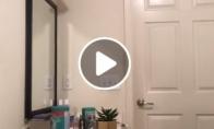 Kaip katinas atsidaro duris?
