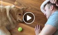 Tingiausias žaidimas tarp šeimininko ir šuns