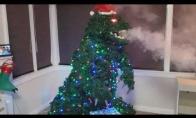 Kiečiausia Kalėdinė eglutė?