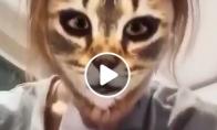 Katinas pirmą kartą pamato kačių filtrą