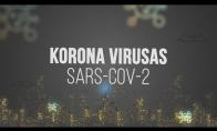 AIŠKINAM: Koronavirusas SARS-CoV-2